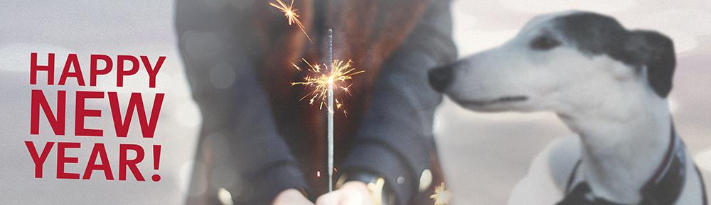sparkler-1932886